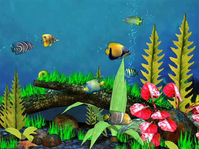 fish aquarium 3d screensaver download aquarium 3d